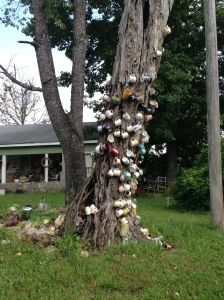 The Cup Tree