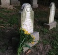 Adopting Graves: A New Autumn Tradition (2013)...