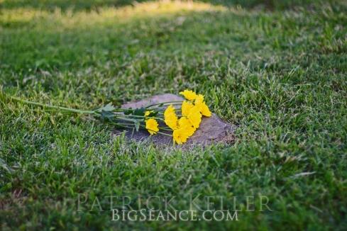 cemetery grave adoption unknown