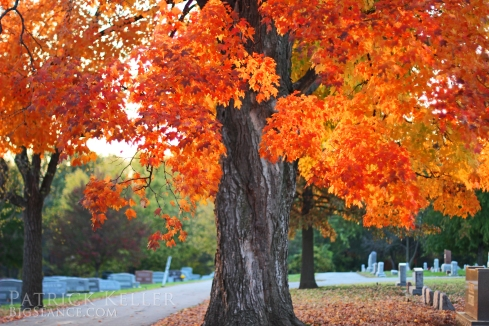 Fall Leaves in the Cemetery, Big Seance