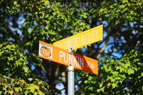 Rombachs Farm, Punkin Blvd, pumpkin patch, big seance